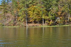Lake Mitchell Waterfront Acreage in Coosa, AL (21 of 51)