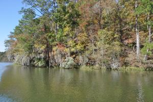 Lake Mitchell Waterfront Acreage in Coosa, AL (22 of 51)
