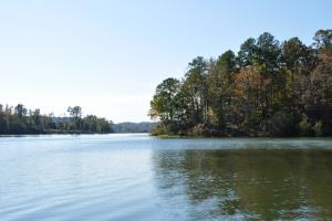 Lake Mitchell Waterfront Acreage in Coosa, AL (29 of 51)