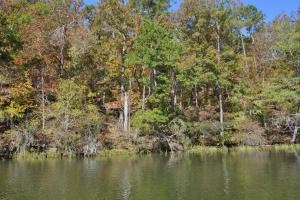 Lake Mitchell Waterfront Acreage in Coosa, AL (26 of 51)