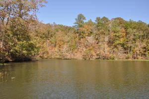Lake Mitchell Waterfront Acreage in Coosa, AL (19 of 51)