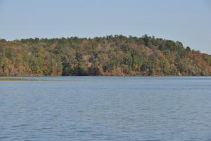 Lake Mitchell Waterfront Acreage in Coosa, AL (47 of 51)