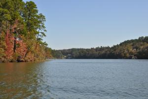 Lake Mitchell Waterfront Acreage in Coosa, AL (40 of 51)