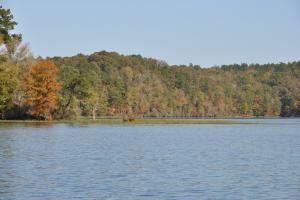 Lake Mitchell Waterfront Acreage in Coosa, AL (48 of 51)