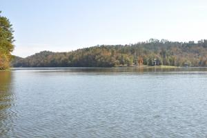 Lake Mitchell Waterfront Acreage in Coosa, AL (16 of 51)