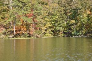 Lake Mitchell Waterfront Acreage in Coosa, AL (15 of 51)