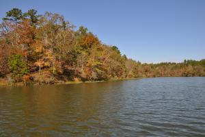 Lake Mitchell Waterfront Acreage in Coosa, AL (38 of 51)