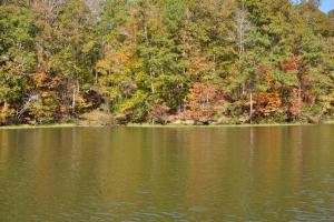 Lake Mitchell Waterfront Acreage in Coosa, AL (23 of 51)