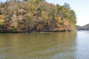 Lake Mitchell Waterfront Acreage in Coosa, AL (17 of 51)