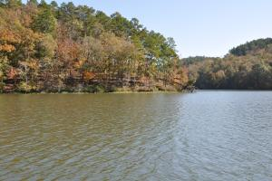 Lake Mitchell Waterfront Acreage in Coosa, AL (45 of 51)
