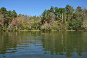 Lake Mitchell Waterfront Acreage in Coosa, AL (34 of 51)