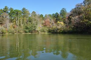 Lake Mitchell Waterfront Acreage in Coosa, AL (37 of 51)
