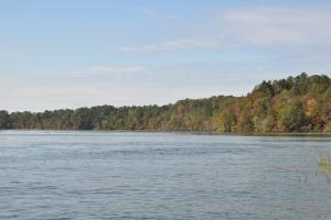 Lake Mitchell Waterfront Acreage in Coosa, AL (35 of 51)