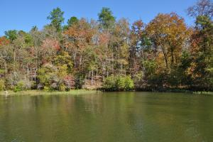 Lake Mitchell Waterfront Acreage in Coosa, AL (32 of 51)
