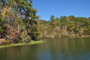 Lake Mitchell Waterfront Acreage in Coosa, AL (50 of 51)