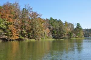Lake Mitchell Waterfront Acreage in Coosa, AL (36 of 51)