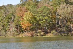 Lake Mitchell Waterfront Acreage in Coosa, AL (33 of 51)