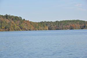 Lake Mitchell Waterfront Acreage in Coosa, AL (43 of 51)