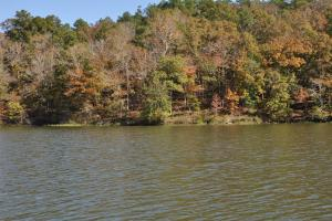 Lake Mitchell Waterfront Acreage in Coosa, AL (39 of 51)