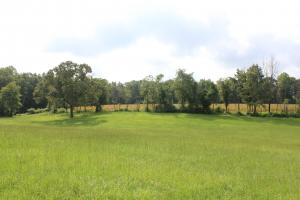 Lebanon Cypress Campground 23 +/- Acres - Berkeley County SC