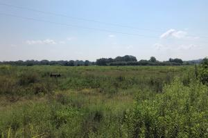 10+/- acres and Shop - Calhoun County MS