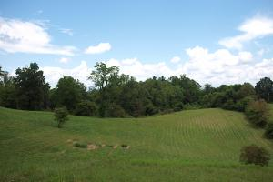 <p>Acres of cleared and rolling pasture</p>