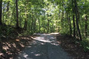 Springville Pine Mountain Homesite Tract - Saint Clair County AL