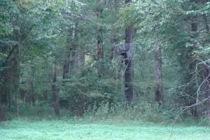 Lonoke County Recreational and Hunting Tract, 40 acres in Lonoke, AR (11 of 16)