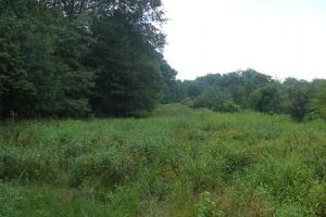 Lonoke County Recreational and Hunting Tract, 40 acres in Lonoke, AR (9 of 16)