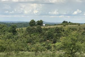 250 Acres Recreational Land near the Buffalo River in Searcy, AR (39 of 48)