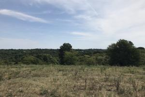 250 Acres Recreational Land near the Buffalo River in Searcy, AR (3 of 48)