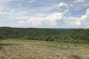 250 Acres Recreational Land near the Buffalo River in Searcy, AR (31 of 48)