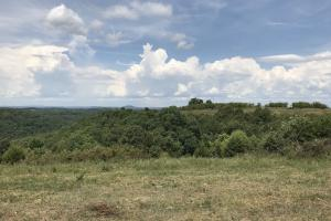 250 Acres Recreational Land near the Buffalo River in Searcy, AR (32 of 48)
