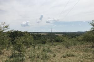 250 Acres Recreational Land near the Buffalo River in Searcy, AR (45 of 48)