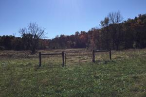 <p>Formerly a cattle farm, good high tensile fence remains</p>