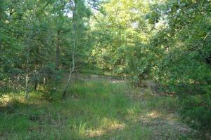 5 Acre Residential Lot  in Faulkner, AR (4 of 19)