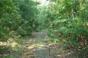 5 Acre Residential Lot  in Faulkner, AR (17 of 19)