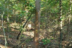 5 Acre Residential Lot  in Faulkner, AR (10 of 19)