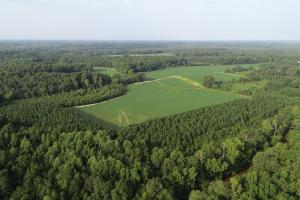 Lane Farm - Johnston County NC