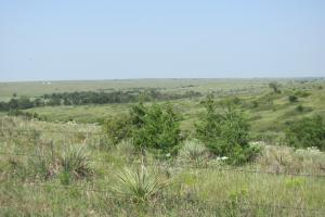 Osborne Hunting and Cattle Ranch in Osborne, KS (3 of 5)