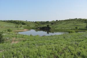 Osborne Hunting and Cattle Ranch in Osborne, KS (4 of 5)