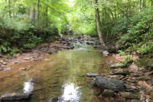 117.924 UNSPOILED AC in DANIEL BOONE NF - Rockcastle County KY