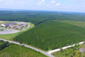 Lake Waccamaw Timber and Recreational Tract - Columbus County NC