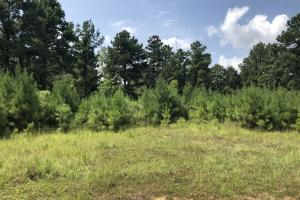 Hinds County Recreational Paradise in Hinds, MS (18 of 50)