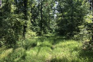 Hinds County Recreational Paradise in Hinds, MS (36 of 50)
