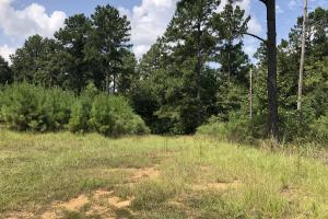 Hinds County Recreational Paradise in Hinds, MS (19 of 50)