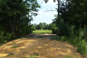 The Davenport Highway Recreation Tract in Crenshaw, AL (37 of 53)