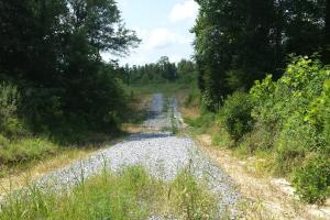 The Davenport Highway Recreation Tract in Crenshaw, AL (38 of 53)