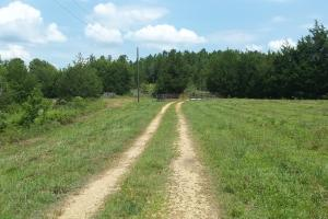 The Davenport Highway Recreation Tract in Crenshaw, AL (43 of 53)