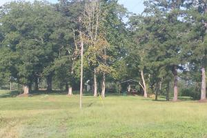 The Davenport Highway Recreation Tract in Crenshaw, AL (6 of 53)